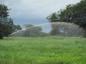 Beneficios del sistema de riego